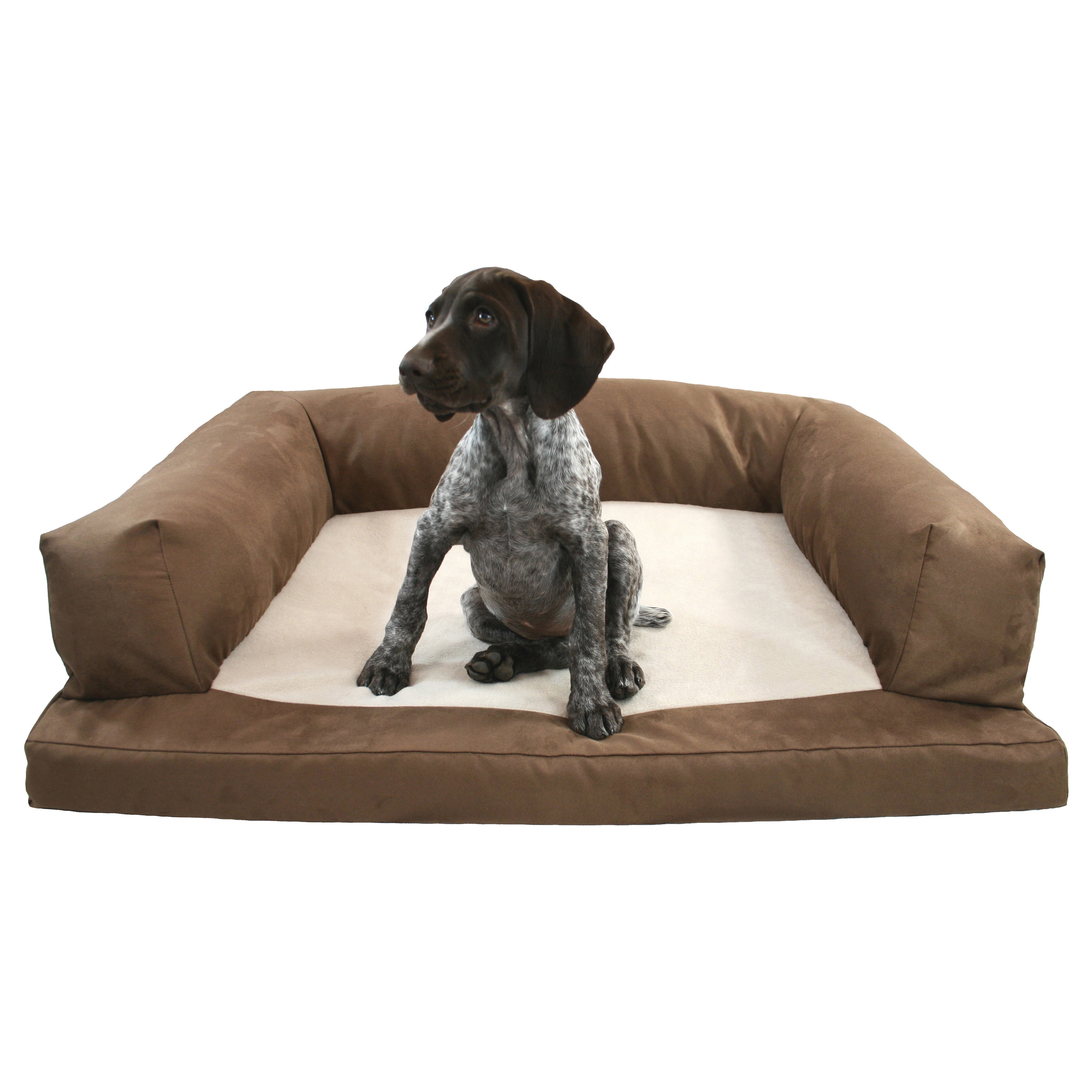 Hidden Valley Baxter Orthopedic Dog Bed and Couch (Small ...