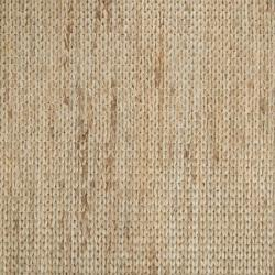 Hand Woven Allentown Natural Fiber Jute Braided Texture