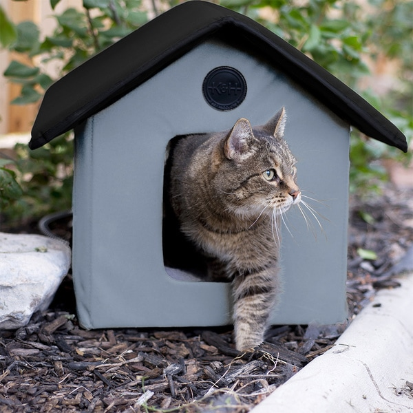 Shop K Amp H Outdoor Heated Kitty House With Door Free