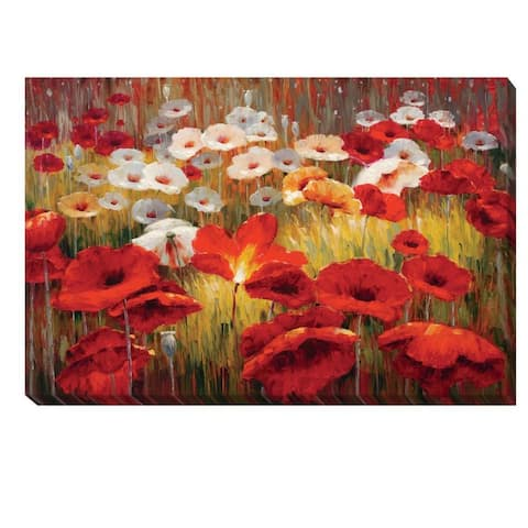 Lucas Santini 'Meadow Poppies II' Canvas Art
