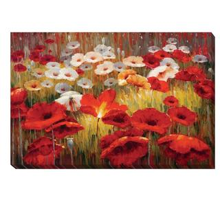 Lucas Santini 'Meadow Poppies II' Canvas Art