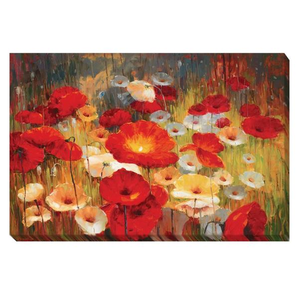 Contemporary Lucas Santini 'Meadow Poppies I' Canvas Art
