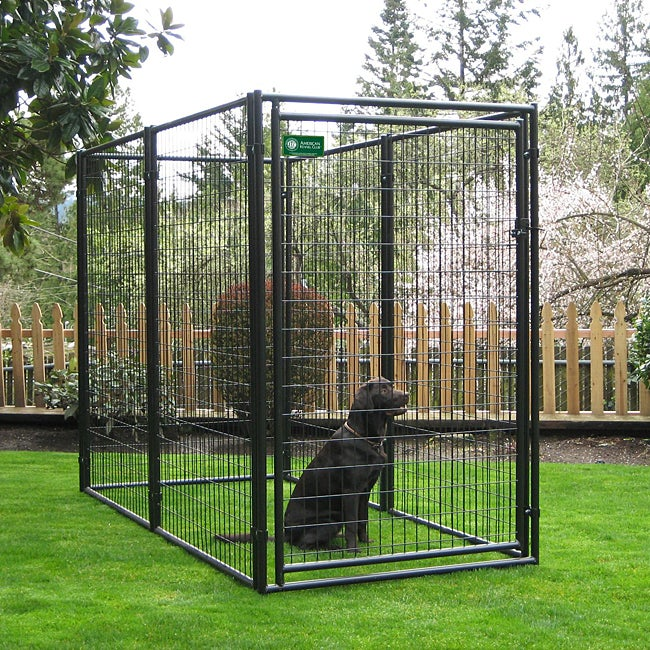 Shop AKC Black Powder Coated Modular Kennel (4' H X 4' W X