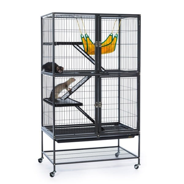 Prevue Pet Products 485 Feisty Ferret Black Hammertone Home