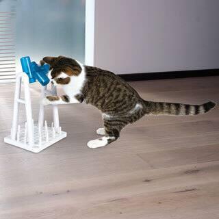 TRIXIE Mad Scientist for Cats|https://ak1.ostkcdn.com/images/products/6247886/TRIXIE-Mad-Scientist-for-Cats-P13886960.jpg?impolicy=medium