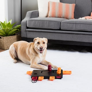 trixie move2win interactive dog toy puzzle level 3