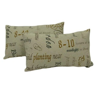 Chatsworth Charcoal Throw Pillows (Set of 2)