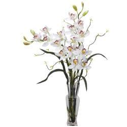 Cymbidium Plant with Small Vase