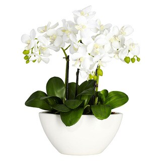 Nearly Natural Phalaenopsis Orchid White Silk Flower Arrangement
