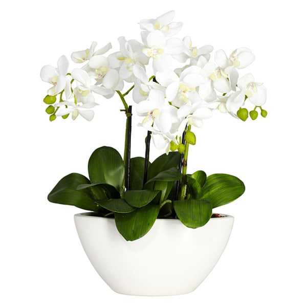 Nearly natural phalaenopsis orchid white silk flower arrangement nearly natural phalaenopsis orchid white silk flower arrangement mightylinksfo Image collections