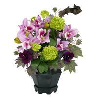 Mixed Cattleya and Hydrangea Arrangement