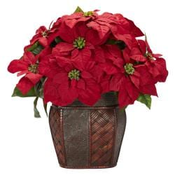 Poinsettia with Decorative Vase