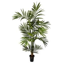 Kentia Palm 6-foot Silk Tree