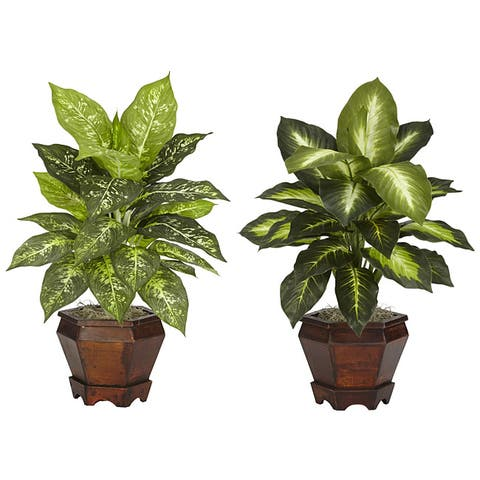 Dieffenbachia with Wood Vase Polyester Plant (Set of 2)