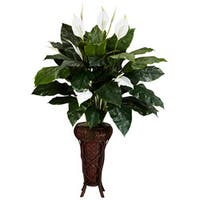 Spathyfillium with Stand Silk Plant