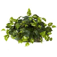 Nearly Natural Silk and Foam Round Pothos Ledge Plant Set