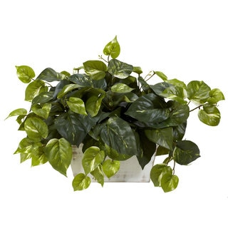 Faux English Ivy Plant In Glass Vase Free Shipping Today