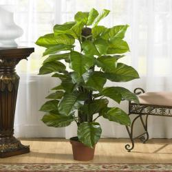 Large 52-inch Leaf Philodendron Silk Plant (Real Touch) - Thumbnail 0