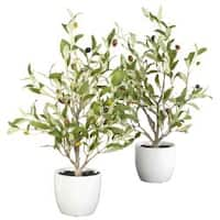 Nearly Natural Olive Silk Tree with White Ceramic Vase (Set of 2)