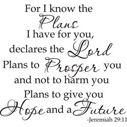 Design on Style 'Jeremiah 29:11 For I Know The Plans I Have For You Declares The Lord' Vinyl Art Quote - Thumbnail 0