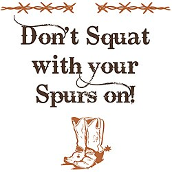 Vinyl Attraction 'Don't Squat with Your Spurs On' Wall Art