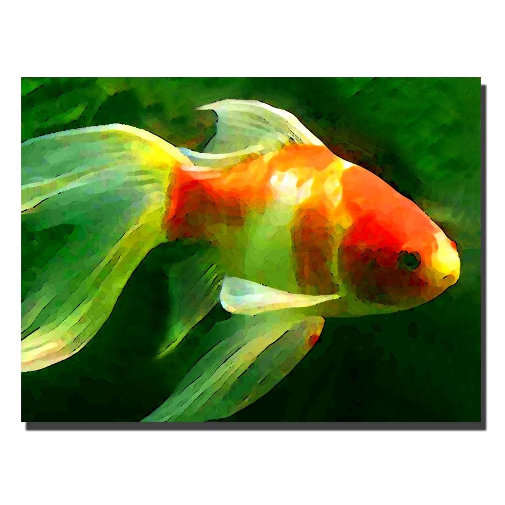 Amy Vangsgard 'Gold Fish' Canvas Art