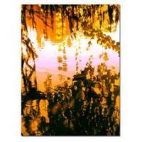Amy Vangsgard, 'Ducks in Morning Light' Canvas Art