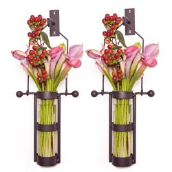 225 & Wall Mount Hanging Glass Cylinder Vase Set with Metal Cradle and Hook