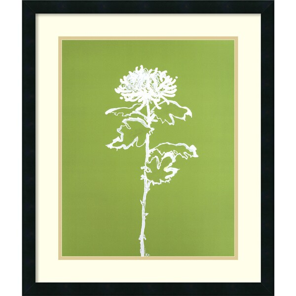 Filippo Ioco 'A Chrysanthemum I' Framed Art Print