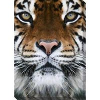 Gallery Direct Tiger Oversized Gallery Wrapped Canvas