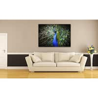 Gallery Direct Peacock Oversized Gallery Wrapped Canvas