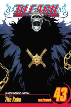 Bleach 43: Kingdom of Hollows (Paperback)