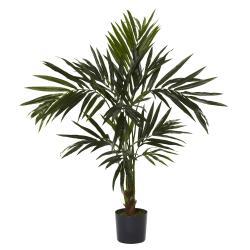 Kentia 5-foot Silk Tree - Thumbnail 0