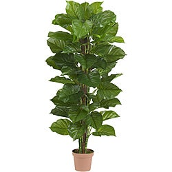63 in Large Leaf Philodendron Silk Plant (Real Touch)