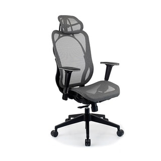 Integrity Seating Ergonomic Mesh High Back Executive Office Chair
