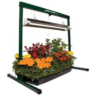 Hydrofarm Jump Start Grow Light System|https://ak1.ostkcdn.com/images/products/6366852/P13984115.jpg?impolicy=medium