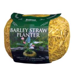 Summit 4000-Gallon Clear Water Barley Straw Planter
