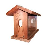 Cedar Bluebird Feeder with Hanging Chain