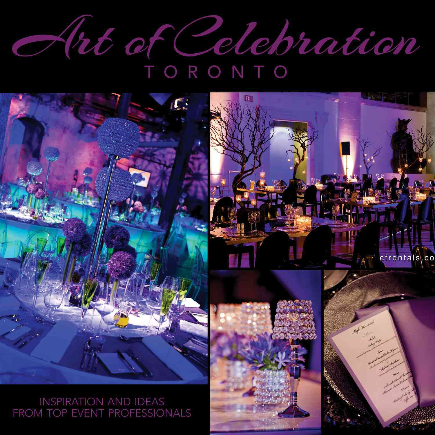 Art of Celebration Toronto: Inspiration and Ideas from Top Event Professionals (Hardcover)