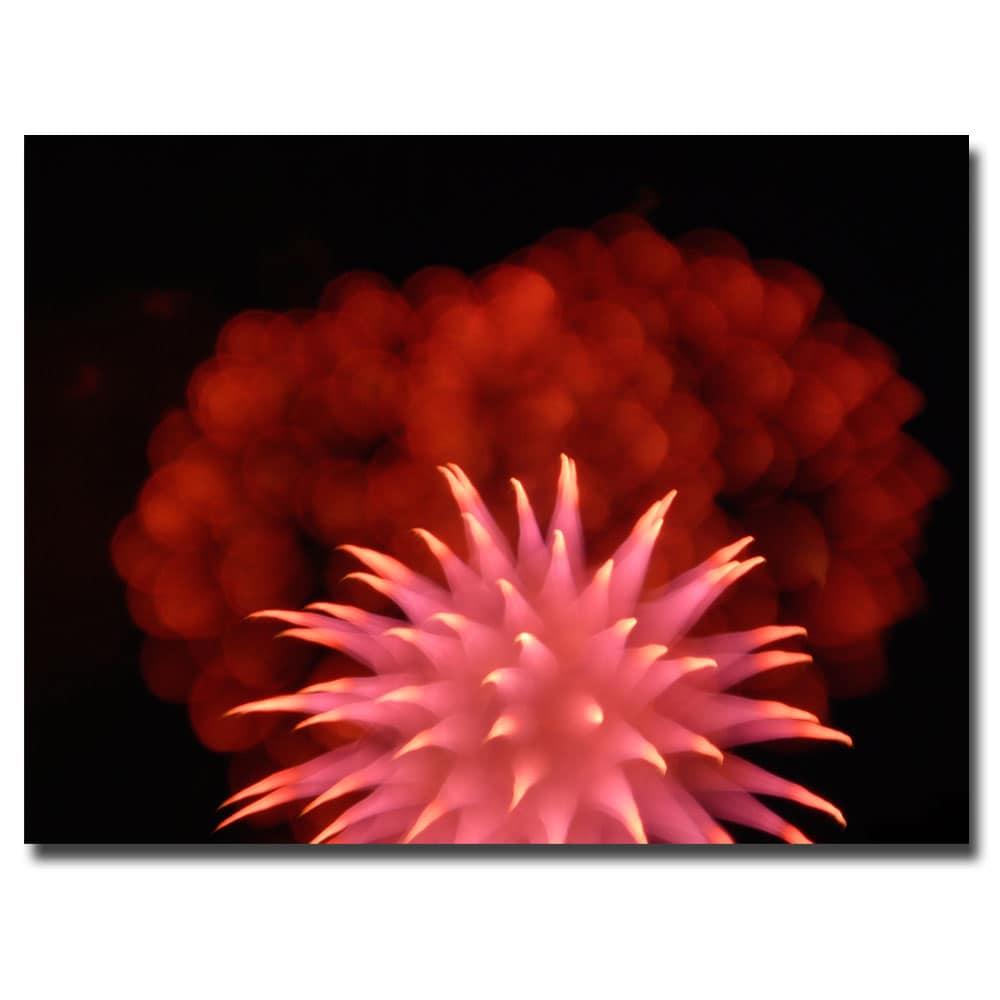 Kurt Shaffer 'Abstract Fireworks' Canvas Art