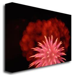 Kurt Shaffer 'Abstract Fireworks' Canvas Art - Thumbnail 1