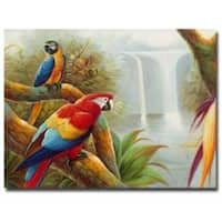 Rio 'Amazon Waterfall' Canvas Wall Art