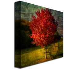 Philippe Sainte-Laudy 'Autumn Red' Canvas Art