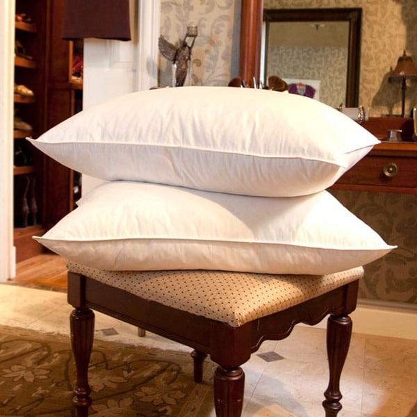 Shop Cozy Cotton White Goose Feather Pillows Set Of 2