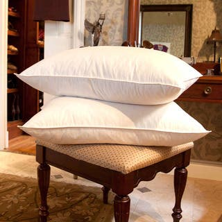 Cozy Cotton White Goose Feather Pillows (Set of 2)
