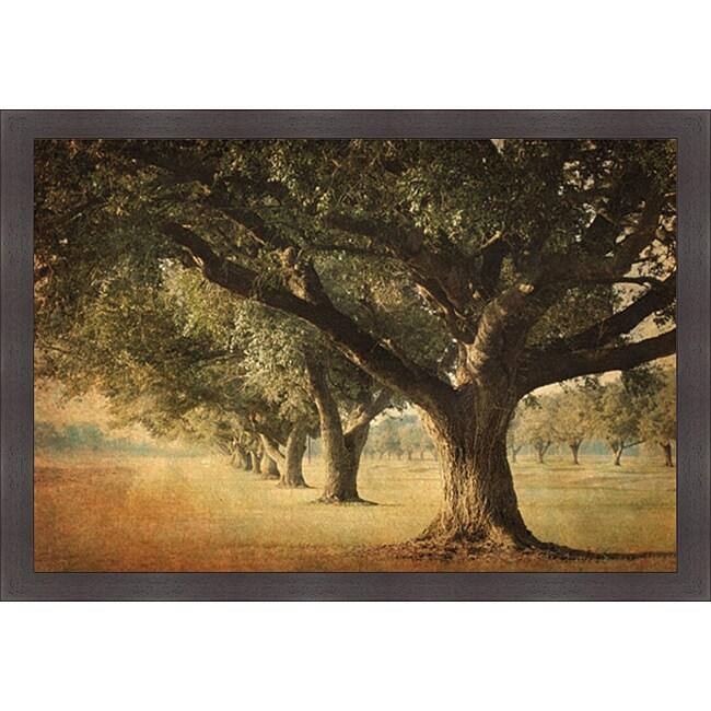 William Guion 'Island Oak' Framed Print Art