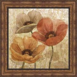 Conrad Knutsen 'Poppy Allure II' Framed Print