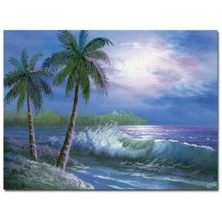 Rio 'Moonlight in Key Largo' Canvas Art