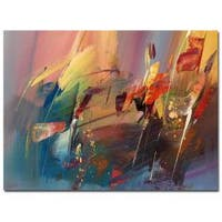 Ricardo Tapia 'Garden' Canvas Art