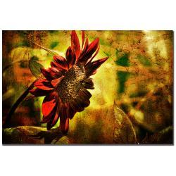 Lois Bryan 'Sunflower' Canvas Art